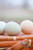 Ovos orgânicos que sentam-se na cesta Fotografia de Stock Royalty Free