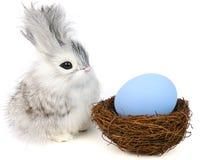 ovos pequenos do coelho e do éster Imagens de Stock Royalty Free