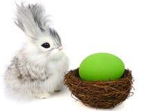 ovos pequenos do coelho e do éster Fotos de Stock Royalty Free