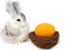 ovos pequenos do coelho e do éster Foto de Stock Royalty Free