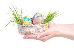 Ovos pintados na cesta à disposição fotos de stock royalty free