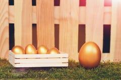 Ovos pintados na cor dourada no musgo Imagem de Stock