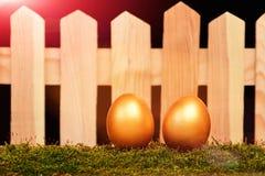 Ovos pintados na cor dourada no musgo Fotos de Stock