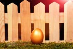 Ovos pintados na cor dourada no musgo Imagens de Stock Royalty Free