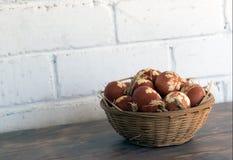 Ovos pintados para o feriado santamente da Páscoa fotografia de stock