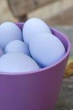 Ovos roxos Imagem de Stock Royalty Free