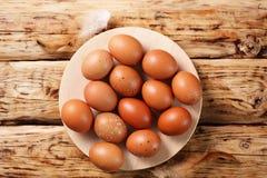 Ovos Rufous na placa Foto de Stock Royalty Free