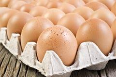 Ovos saudáveis frescos da exploração agrícola Fotos de Stock Royalty Free