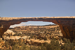 Owachoma Natural Bridge. At Natural Bridges National Monument in Utah royalty free stock photos