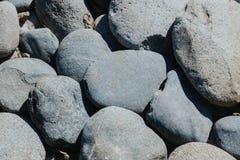 Owalni brukowowie zaokrąglający miękka część kształtują, denni głazy, tekstury tło zdjęcie stock