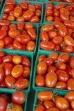owalni czerwoni mali pomidory Zdjęcia Stock