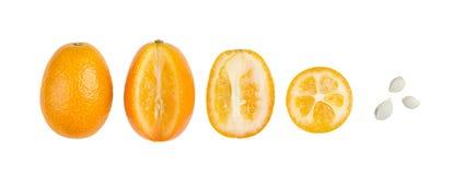 Owalni Kumquats Z ziarnami Odizolowywającymi Na bielu Z Rzędu Obraz Stock