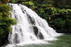 Owaroha Falls - Coromandel Royalty Free Stock Image