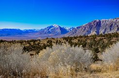 Owen`s Valley and the Sierra Mountains stock image