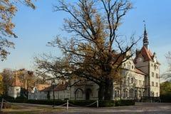 Łowiecki kasztel Hrabiowski Shenborn w Carpaty wiosce Zakarpattja region, Ukraina obrazy stock
