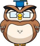 Owl教授 库存照片