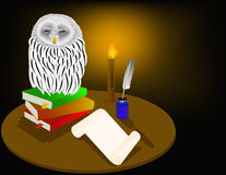 Owl. A set of books and writing materials for students or professors. Cabinet of Professor Royalty Free Stock Photo
