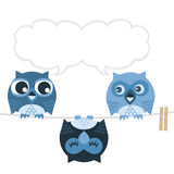 Owl. Sleep like a bat of the different  owl amazes others Royalty Free Stock Image