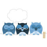 Owl. Friends are trying to sleep with the owls Stock Images
