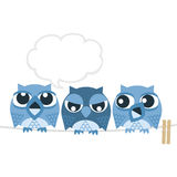 Owl. With friends that are trying to sleep counting sheep owl Stock Photo