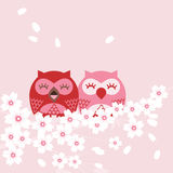 Owl. Happy spring cherry blossoms in spring birds sit among branches Stock Images