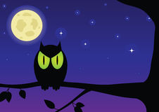Owl. Against the night sky Stock Photo