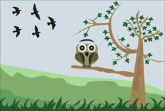 Owl. Illustration of an owl perched on a tree with birds in the background Royalty Free Stock Images