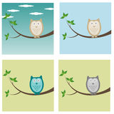 Owl. Illustration of owl in different colors and on different backgrounds vector illustration