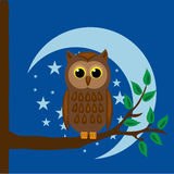 Owl. Sitting on a branch Royalty Free Stock Photos