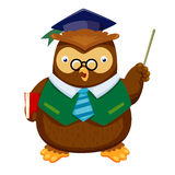 Owl   stock illustrationer