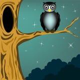 Owl Arkivfoto