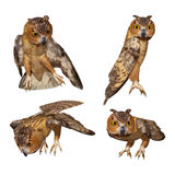 Owl. Digital animal for your artistic creations and/or projects Stock Images