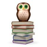 Owl. 3d cartoon character owl on white Stock Photos