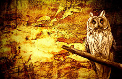 Owl abstract halloween grunge Royalty Free Stock Photo