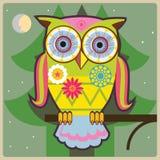 Owl-allmänt Fotografering för Bildbyråer