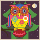 Owl-allmänt på natten Royaltyfria Foton