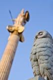 Owl And Athena Stock Photo