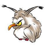 Owl angry bird cartoon illustration Royalty Free Stock Images