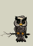 Owl. Angry but cute looking owl sitting on branch. pencil drawing illustration vector illustration