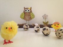 Owl and baby chick Stock Photos