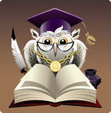 Owl in bachelor hat. Illustration with wise owl in bachelor hat sitting behind a book drawn in cartoon style Royalty Free Stock Image