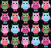 Owl background. Colourful owls on black background colour Royalty Free Stock Image