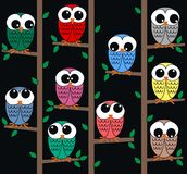 Owl background Royalty Free Stock Images