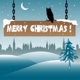 Owl balancing on a Christmas plate Stock Images