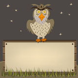 Owl on banner Stock Image