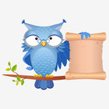 Owl bird. Illustration of a wise owl with a scroll sitting on a branch Royalty Free Stock Photos