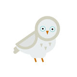 Owl bird cartoon vector. Owl white wild cartoon . Flat bird character. Great horned wildlife animal nature vector illustration. Wing wise decoration element Stock Photo