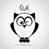 Owl bird Royalty Free Stock Photo