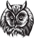 Owl bird head. Black and white style Royalty Free Stock Images