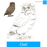 Owl bird learn to draw vector. Owl learn birds educational game learn to draw vector illustration Stock Images
